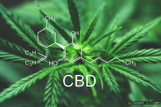 how to make cbd oil: cbd molecule