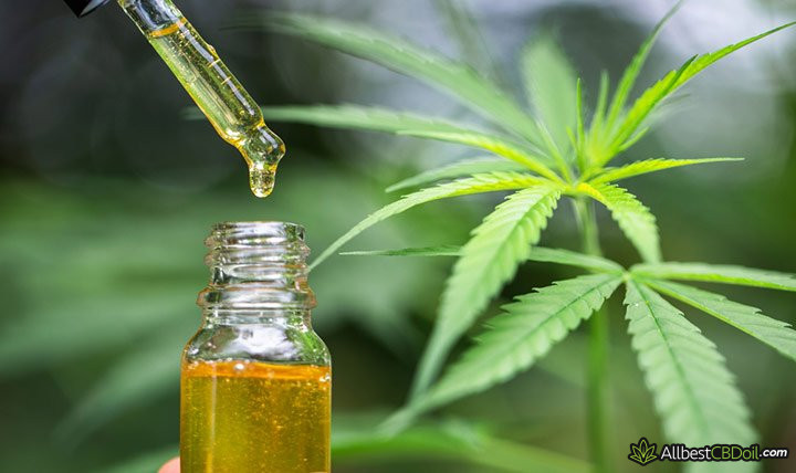 CBD oil Illinois: CBD oil.