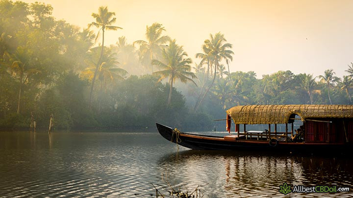 CBD oil India: a traditional India boat.