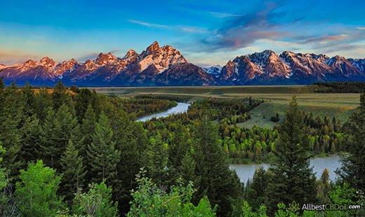 CBD Oil Wyoming: Wyoming state.